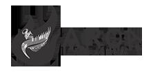criar site em BELO HORIZONTE